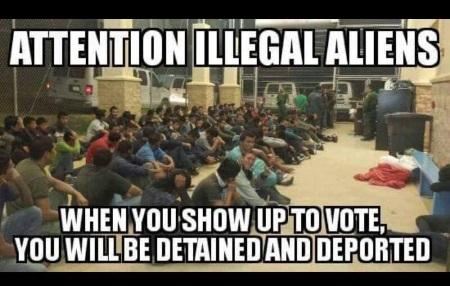 illegals-vote2
